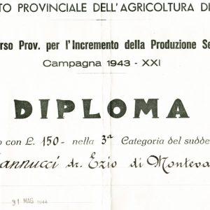 CONCORSO PROV. PER L'INCREMENTO DELLA PRODUZIONE SERICA 1943