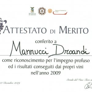 STRADA DEL VINO AREZZO 2009